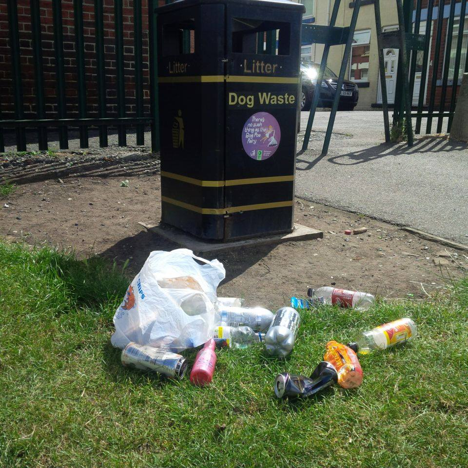 Litter Picking on Victoria Park