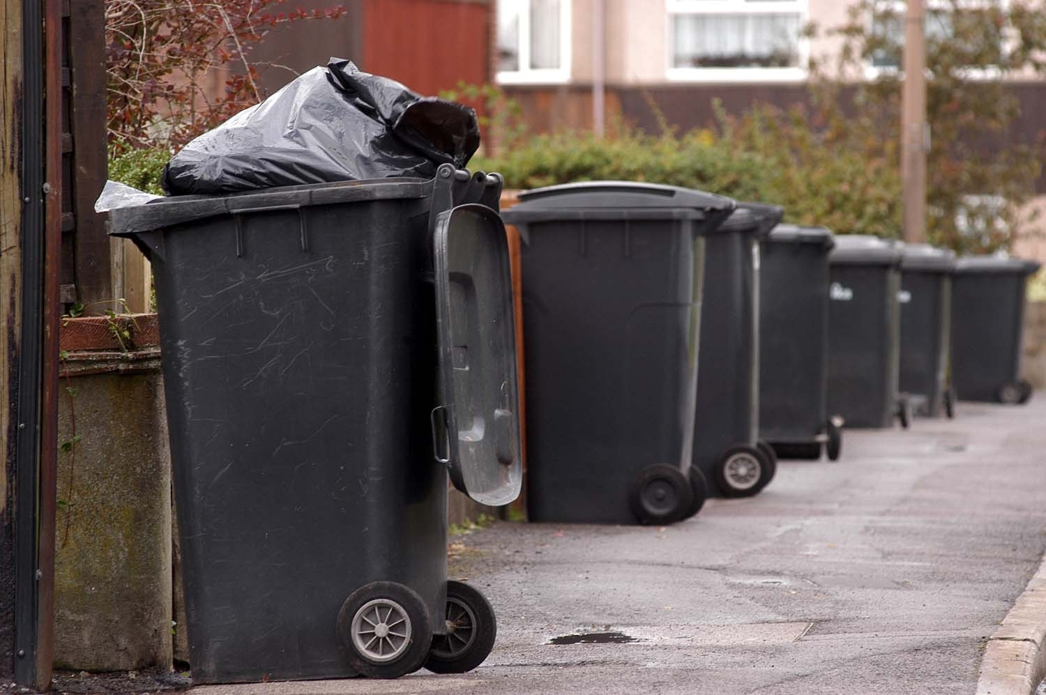 Changes To Bin Collection
