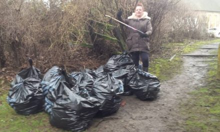 Litter pick with Mexborough Ferryboat & HS2 Meeting 21.01.17