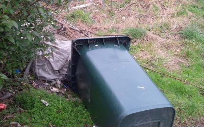 **BIN UPDATE** Mex Cllrs still waiting for bin emptying info