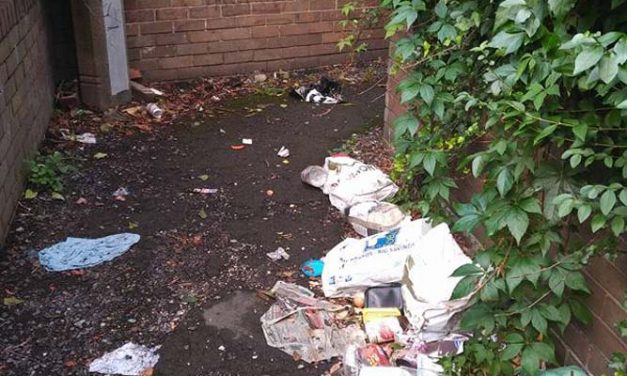 Mexborough Cllrs been busy dealing with many community issues!