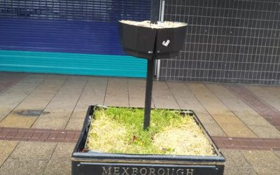 Residents Complaints About the State of Mexborough Town Centre